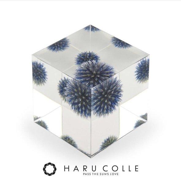 HARU COLLE 認定  クリスタル・アートリウム®  テクニカル・デザインコース 神奈川